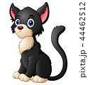 動物 くろねこ クロネコのイラスト 44462512
