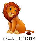 Vector illustration of Cute lion cartoon 44462536