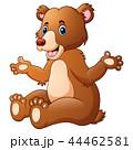 くま クマ 熊のイラスト 44462581
