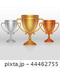チャンピオン 覇者 アワードのイラスト 44462755