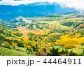 (群馬県)渋峠から望む、紅葉した芳ヶ平湿原 44464911
