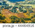(群馬県)渋峠から望む、紅葉した芳ヶ平湿原 44464916
