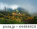 (群馬県)渋峠から望む、紅葉した芳ヶ平湿原 44464928