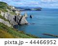 崖 室蘭市 海の写真 44466952
