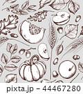 秋 ベクトル あきのイラスト 44467280