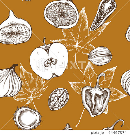 Vector seamless pattern of apples, peppers, onions and walnuts. Hand drawn vector illustration 44467374