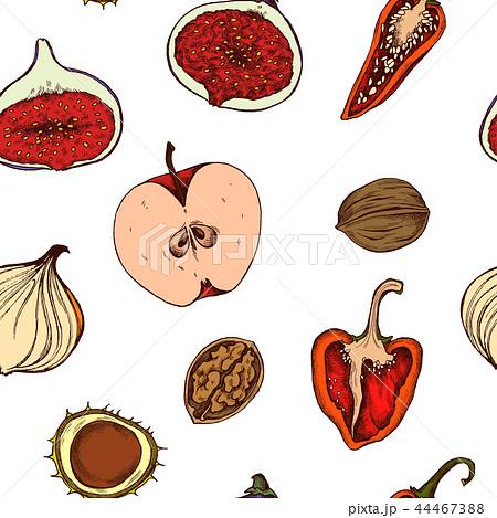 Vector seamless pattern of apples, peppers, onions and walnuts. Hand drawn vector illustration 44467388