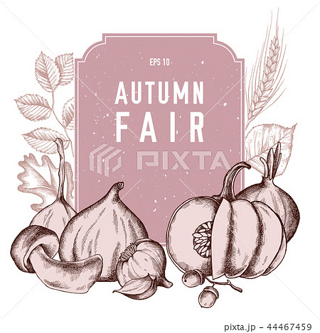 Vector collection of hand drawn autumn vegetables 44467459