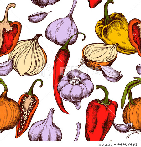 Vector seamless pattern of onions , garlic and peppers. Hand drawn vector illustration 44467491