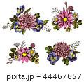 パンジー フローラル 菊科のイラスト 44467657