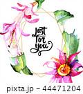 花 水彩画 サキュレントのイラスト 44471204