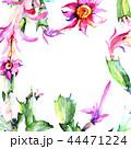 花 水彩画 サキュレントのイラスト 44471224