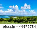 石垣島 川平湾 風景の写真 44479734