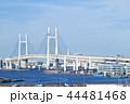 横浜ベイブリッジ ベイブリッジ 橋の写真 44481468