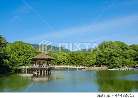奈良公園の浮見堂 44483015