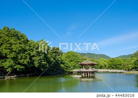 奈良公園の浮見堂 44483016
