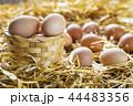 Fresh eggs in nest on straw at farm 44483356