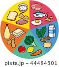 五大栄養素 44484301