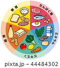 五大栄養素 44484302