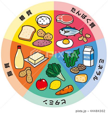 五大栄養素のイラスト素材 [4448...