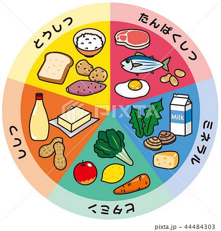 五大栄養素 44484303