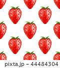 シームレス くだもの フルーツのイラスト 44484304