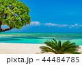 コンドイビーチ 竹富島 ビーチの写真 44484785