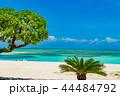 コンドイビーチ 竹富島 ビーチの写真 44484792