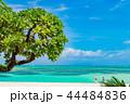コンドイビーチ 石垣島 海の写真 44484836