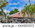 屋根 竹富島 晴れの写真 44485053