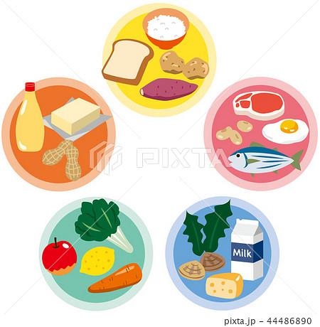 五大栄養素 栄養バランス 44486890