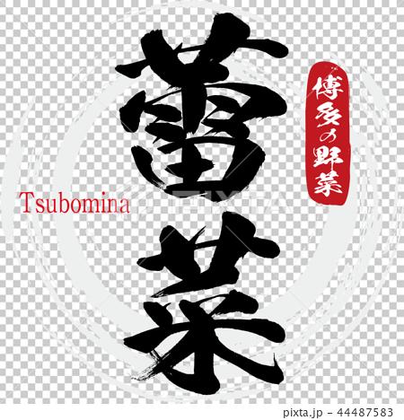 大白菜·Tsubomina(書法·手寫) 44487583