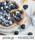 タルト ケーキ ベリーの写真 44488286