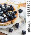 タルト ケーキ ベリーの写真 44488309