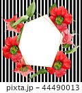 Watercolor red brugmansia flower. Floral botanical flower. Frame border ornament square. 44490013