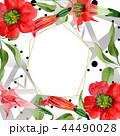 Watercolor red brugmansia flower. Floral botanical flower. Frame border ornament square. 44490028