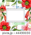 Watercolor red brugmansia flower. Floral botanical flower. Frame border ornament square. 44490030