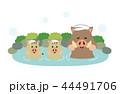 イノシシ 温泉 44491706