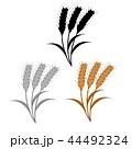 麦の穂のイラスト 44492324
