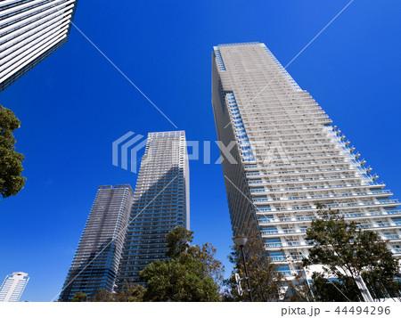 臨海地域のタワーマンション 44494296