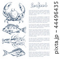 Lobster and Crayfish, Bream or Bass Seafood Poster 44496435