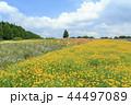 青山リゾート 44497089
