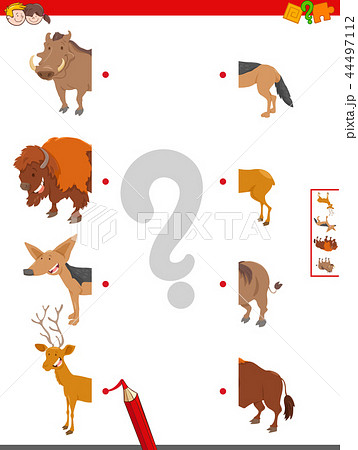 join halves of animal pictures educational game 44497112
