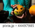 かぼちゃ カボチャ 南瓜の写真 44497985