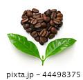 コーヒー豆と葉っぱ、フェアトレードイメージ 44498375