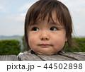 子供 人物 山の写真 44502898