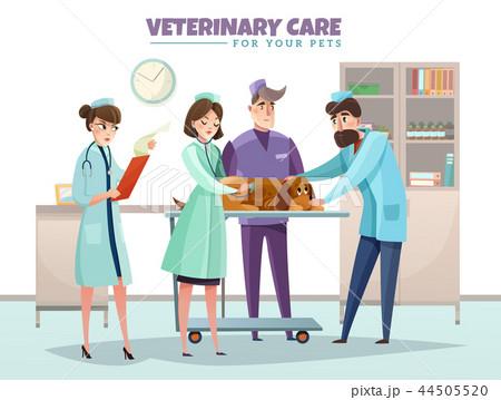 Veterinary Care Illustration 44505520