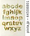 アルファベット 文字 小文字の写真 44508801