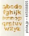 アルファベット 文字 小文字の写真 44508805