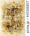 アルファベット 文字 小文字の写真 44508807